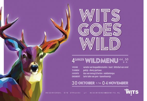 Wits Goes Wild